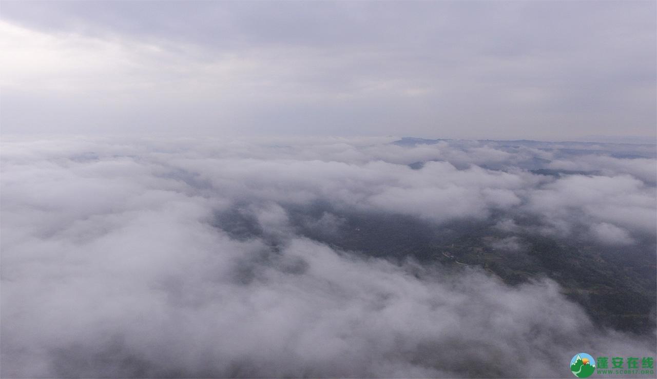 蓬安晨雾似云海 - 第2张  | 蓬安在线
