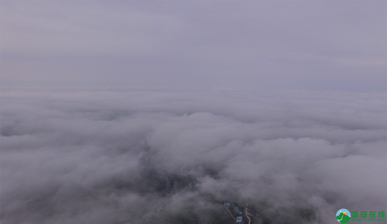 蓬安晨雾似云海 - 第4张  | 蓬安在线