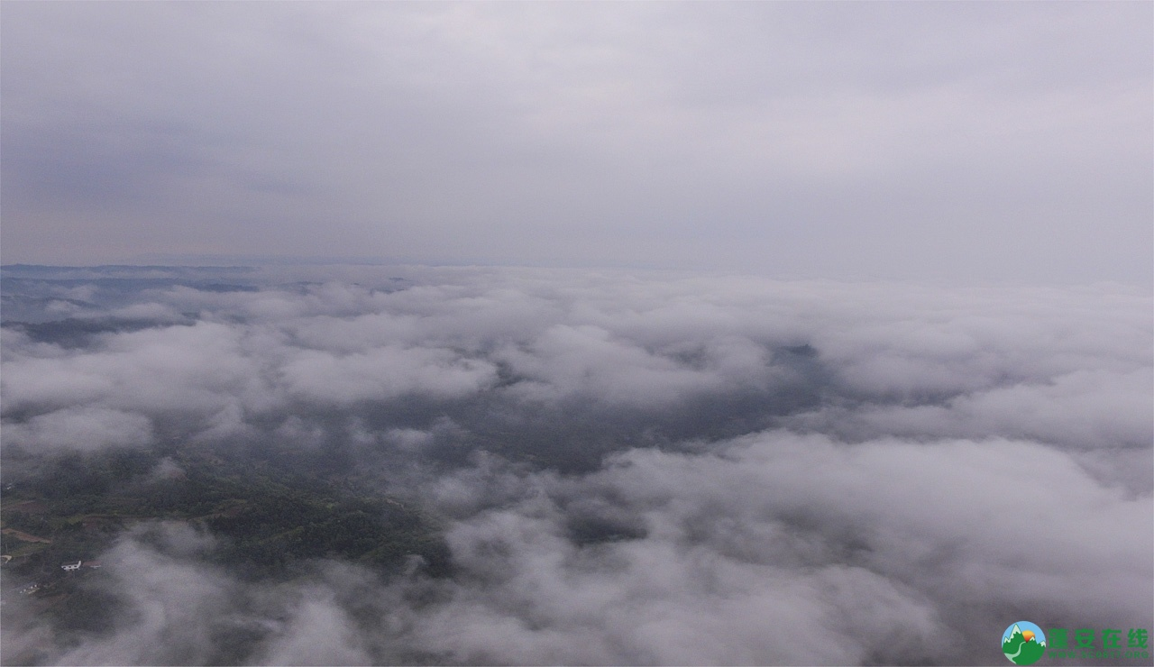 蓬安晨雾似云海 - 第5张  | 蓬安在线