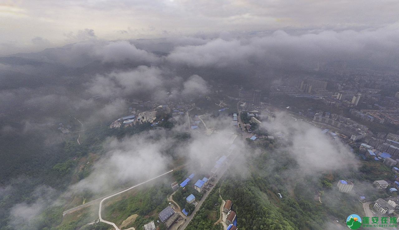 蓬安晨雾似云海 - 第7张  | 蓬安在线
