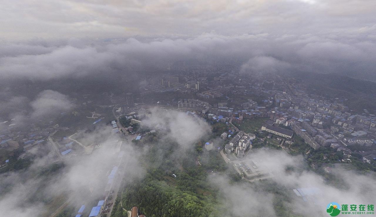 蓬安晨雾似云海 - 第8张  | 蓬安在线
