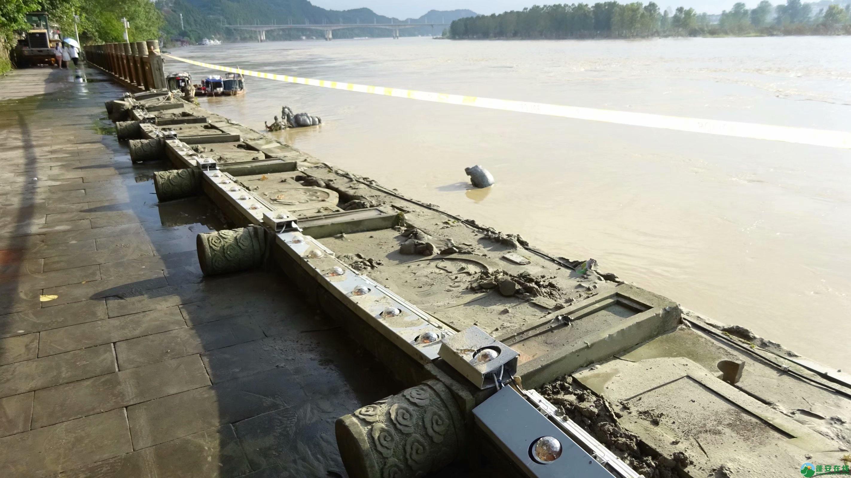 洪水退去后的蓬安县嘉陵江 - 第10张  | 蓬安在线