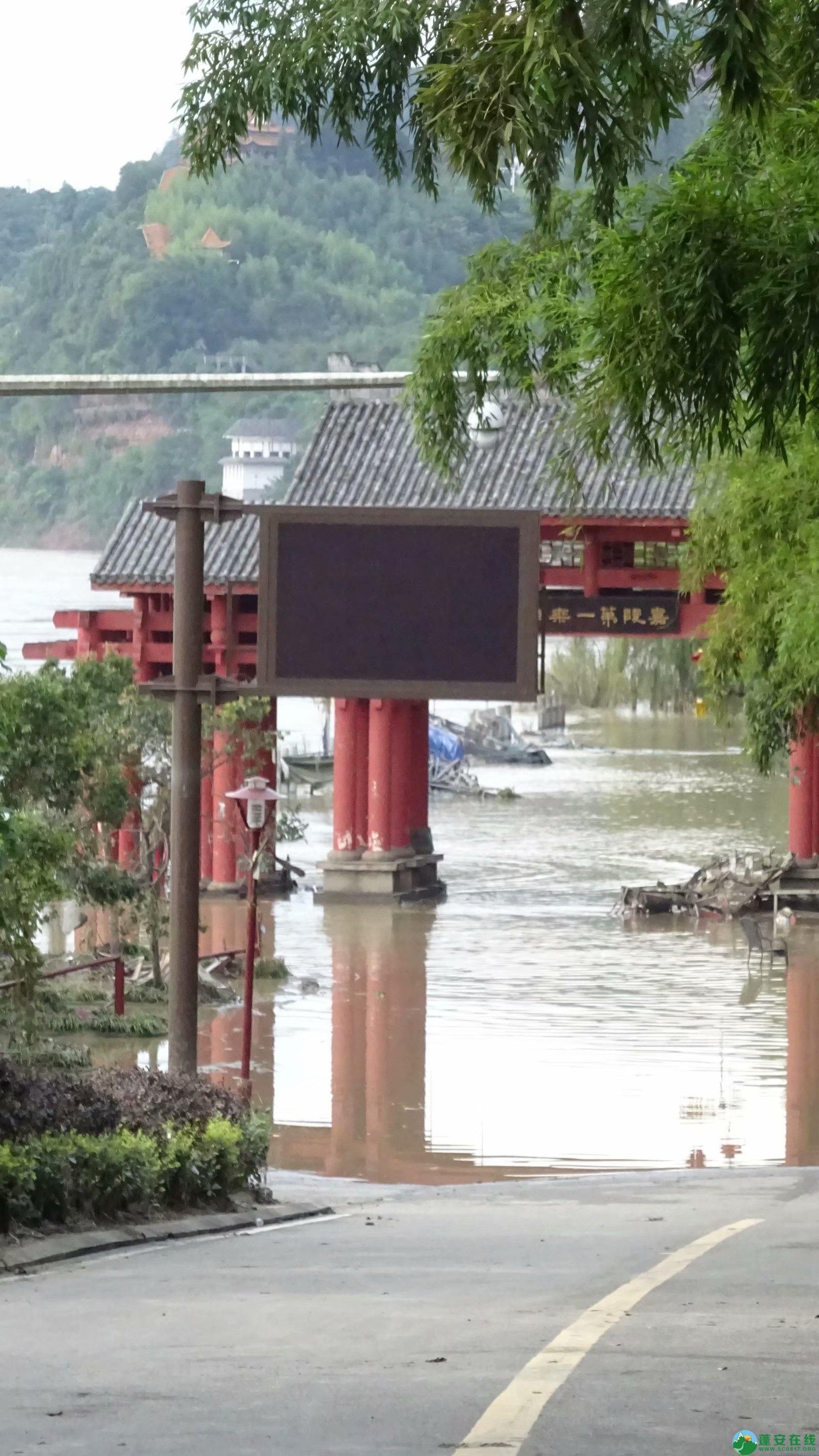 洪水退去后的蓬安县嘉陵江 - 第15张  | 蓬安在线