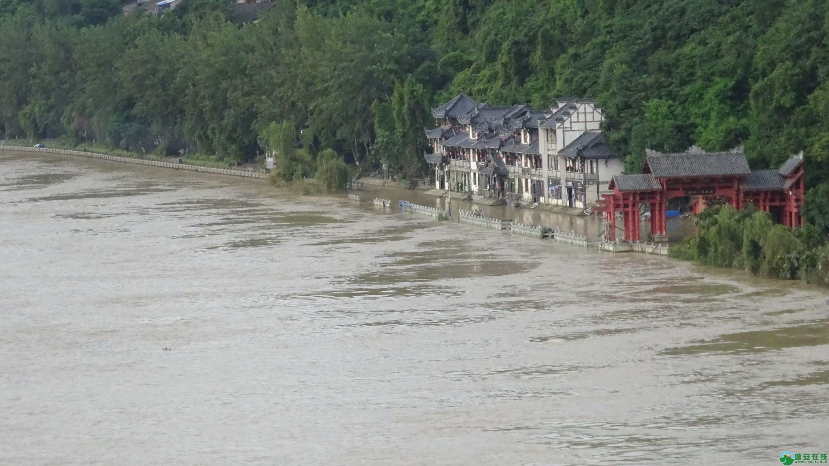 洪水退去后的蓬安县嘉陵江 - 第16张  | 蓬安在线