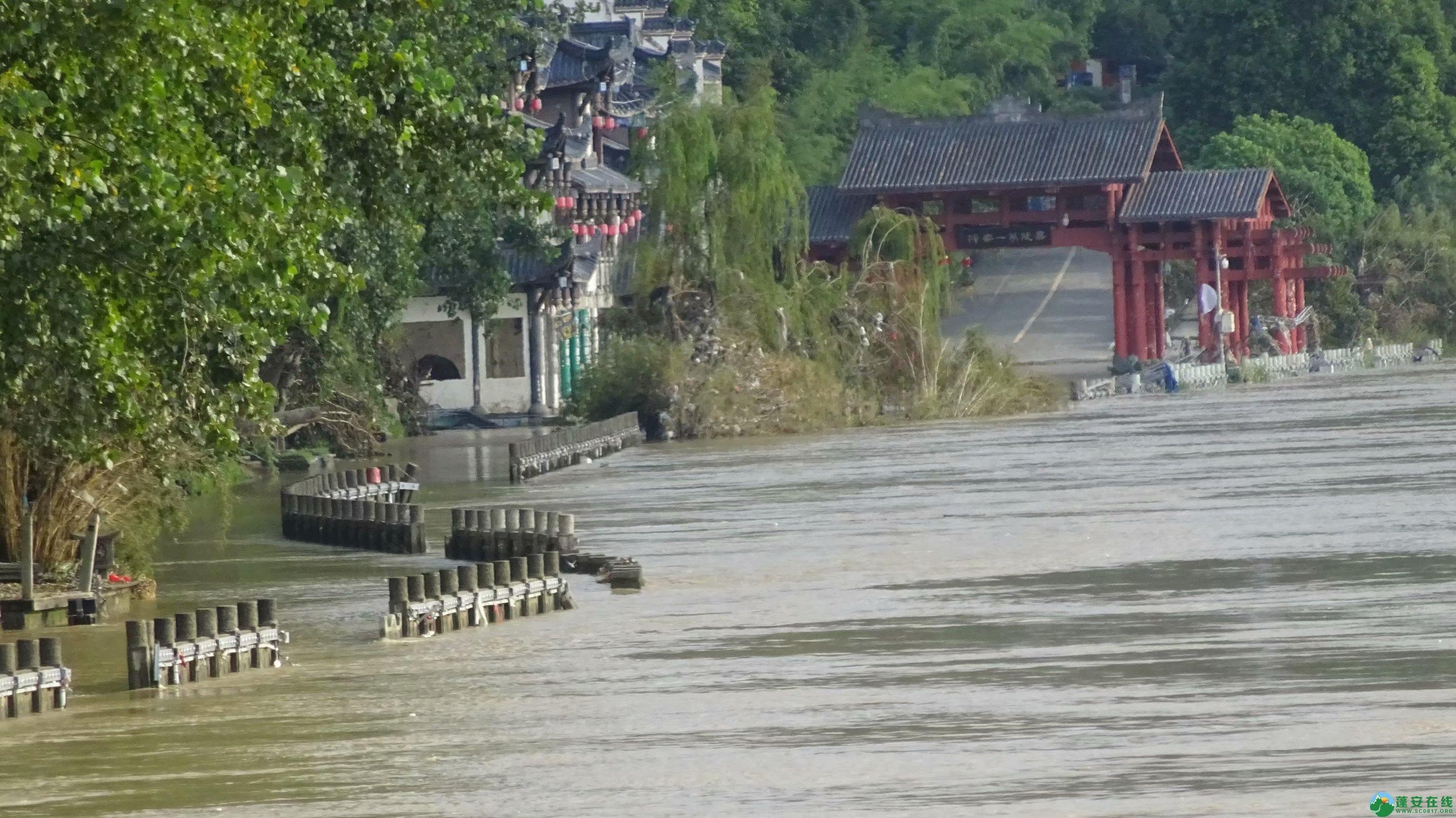 洪水退去后的蓬安县嘉陵江 - 第4张  | 蓬安在线