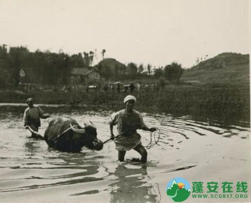 1909年的四川(珍贵老照片) - 第5张  | 蓬安在线