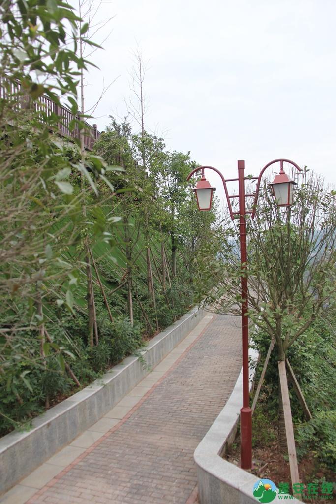 蓬安桑梓火锅公园山顶已对外开放 - 第20张  | 蓬安在线