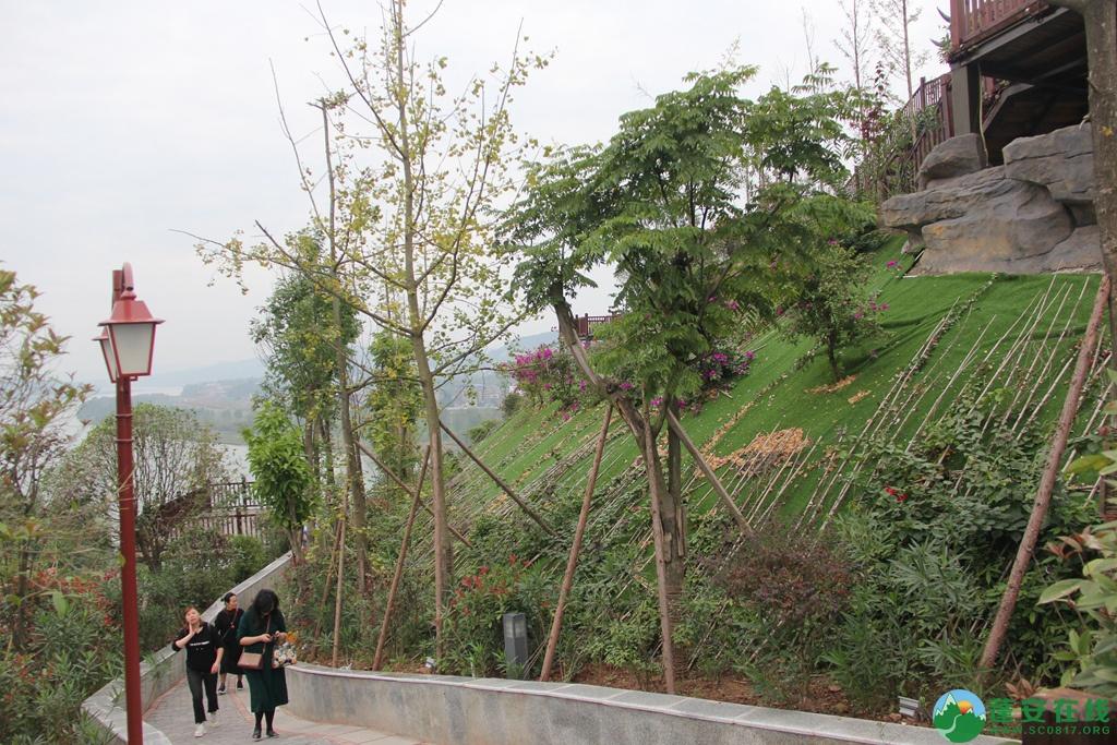 蓬安桑梓火锅公园山顶已对外开放 - 第23张  | 蓬安在线