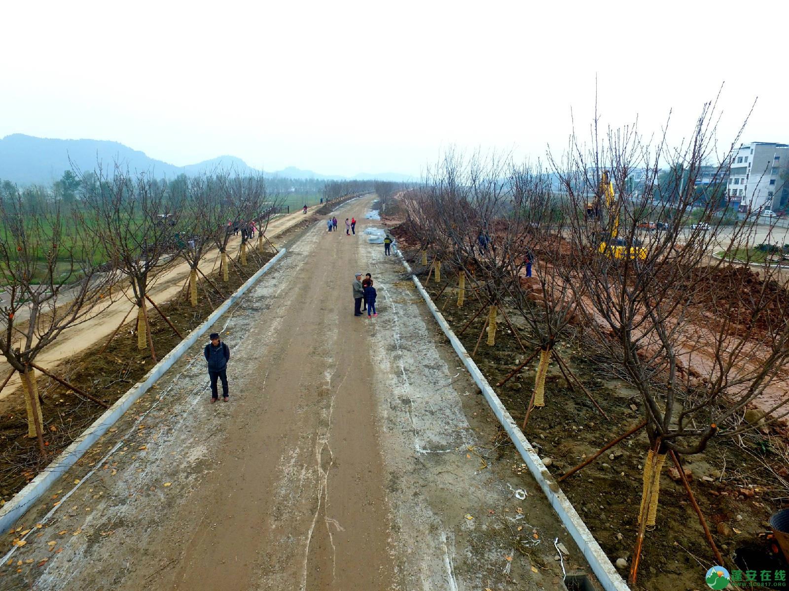 蓬安锦屏湿地公园嘉陵江跑道建设进度 - 第1张  | 蓬安在线
