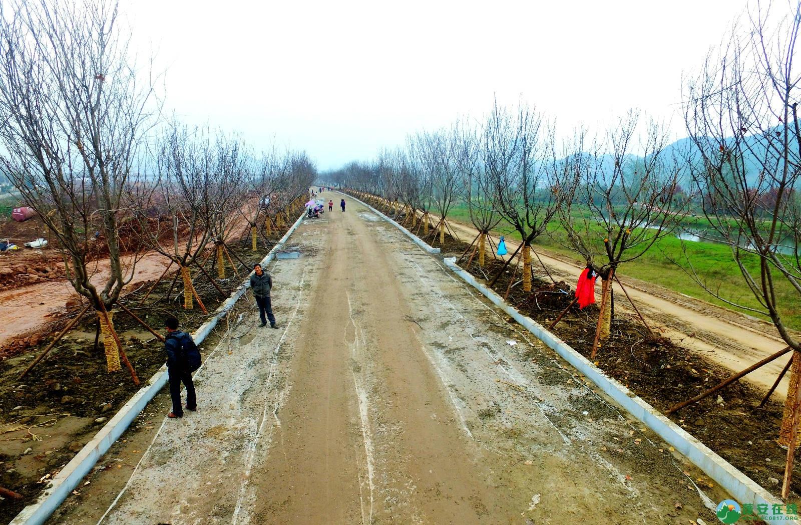 蓬安锦屏湿地公园嘉陵江跑道建设进度 - 第4张  | 蓬安在线