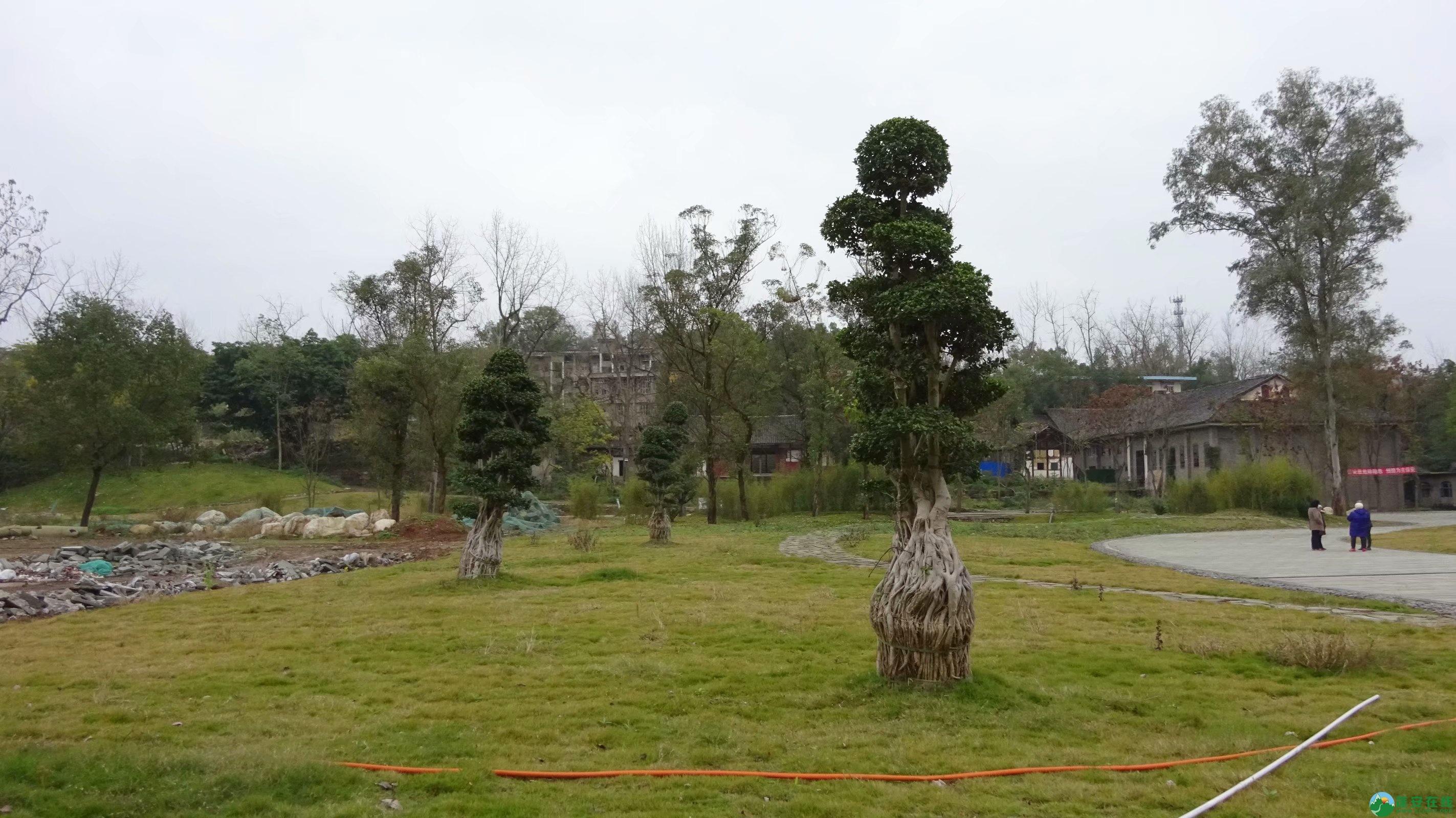 蓬安县锦屏镇相如故城最新进展 - 第8张  | 蓬安在线