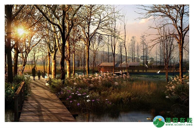 蓬安漫滩湿地 - 第7张  | 蓬安在线