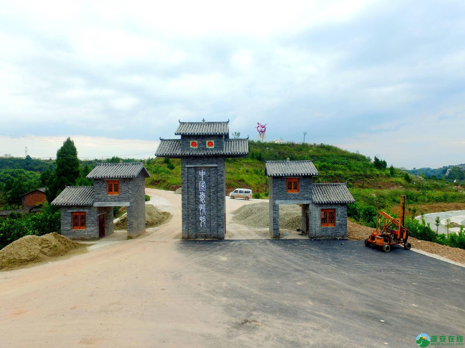 蓬安县正源镇红豆村首个悬空玻璃吊桥正式开放 - 第7张  | 蓬安在线