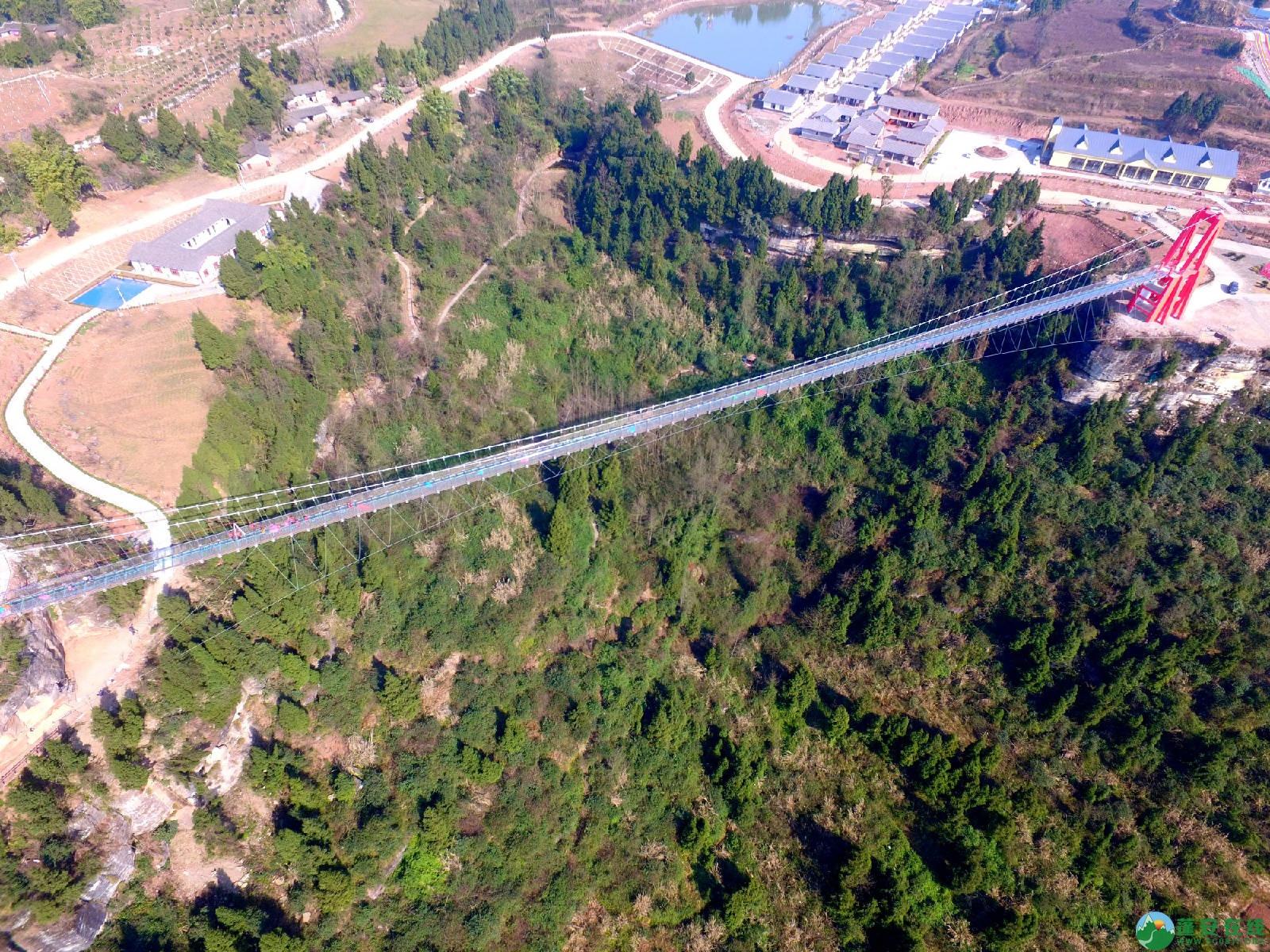 蓬安县正源镇红豆村首个悬空玻璃吊桥正式开放 - 第9张  | 蓬安在线