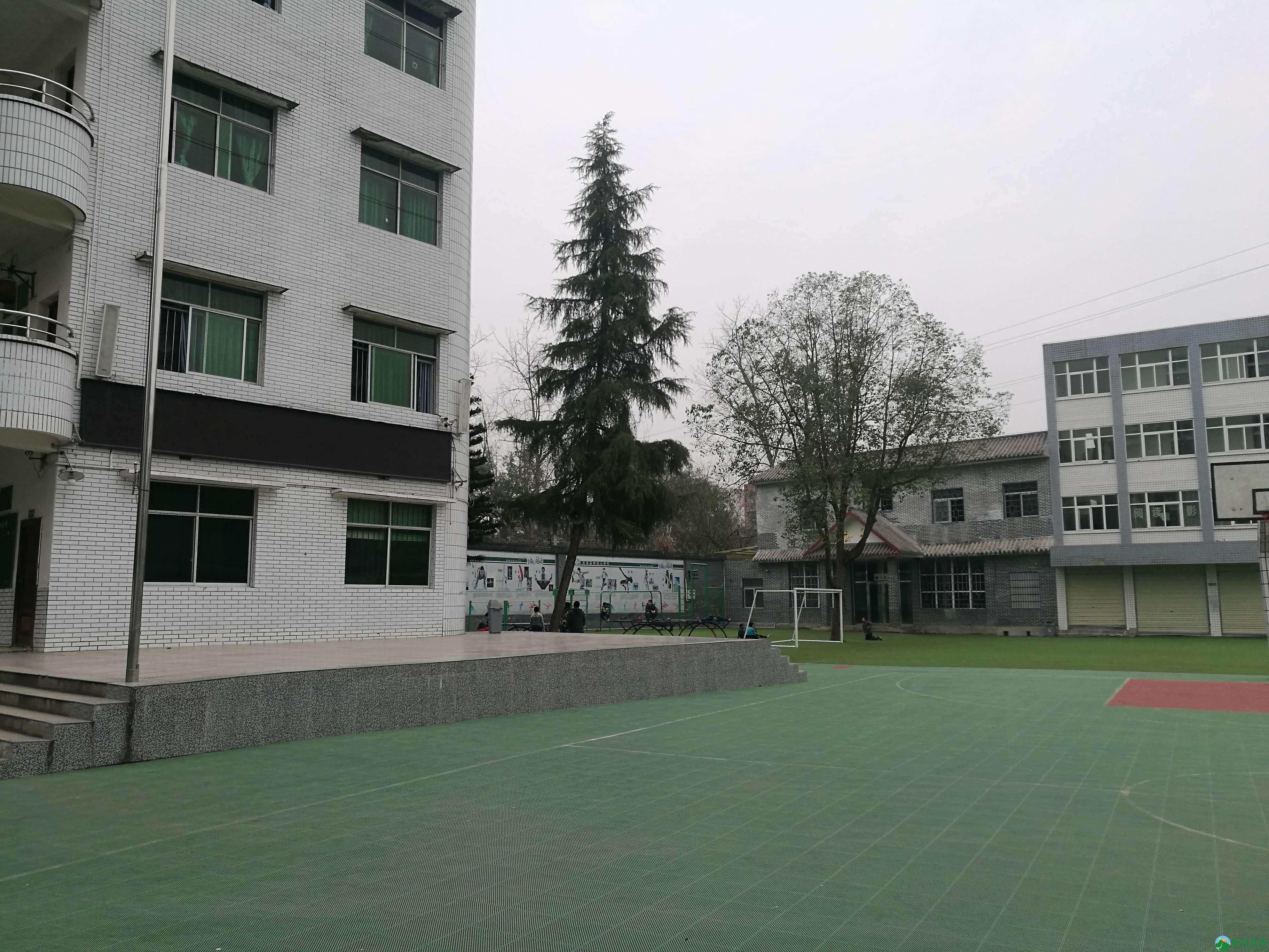 近二十年后再次走进锦屏小学 - 第3张  | 蓬安在线
