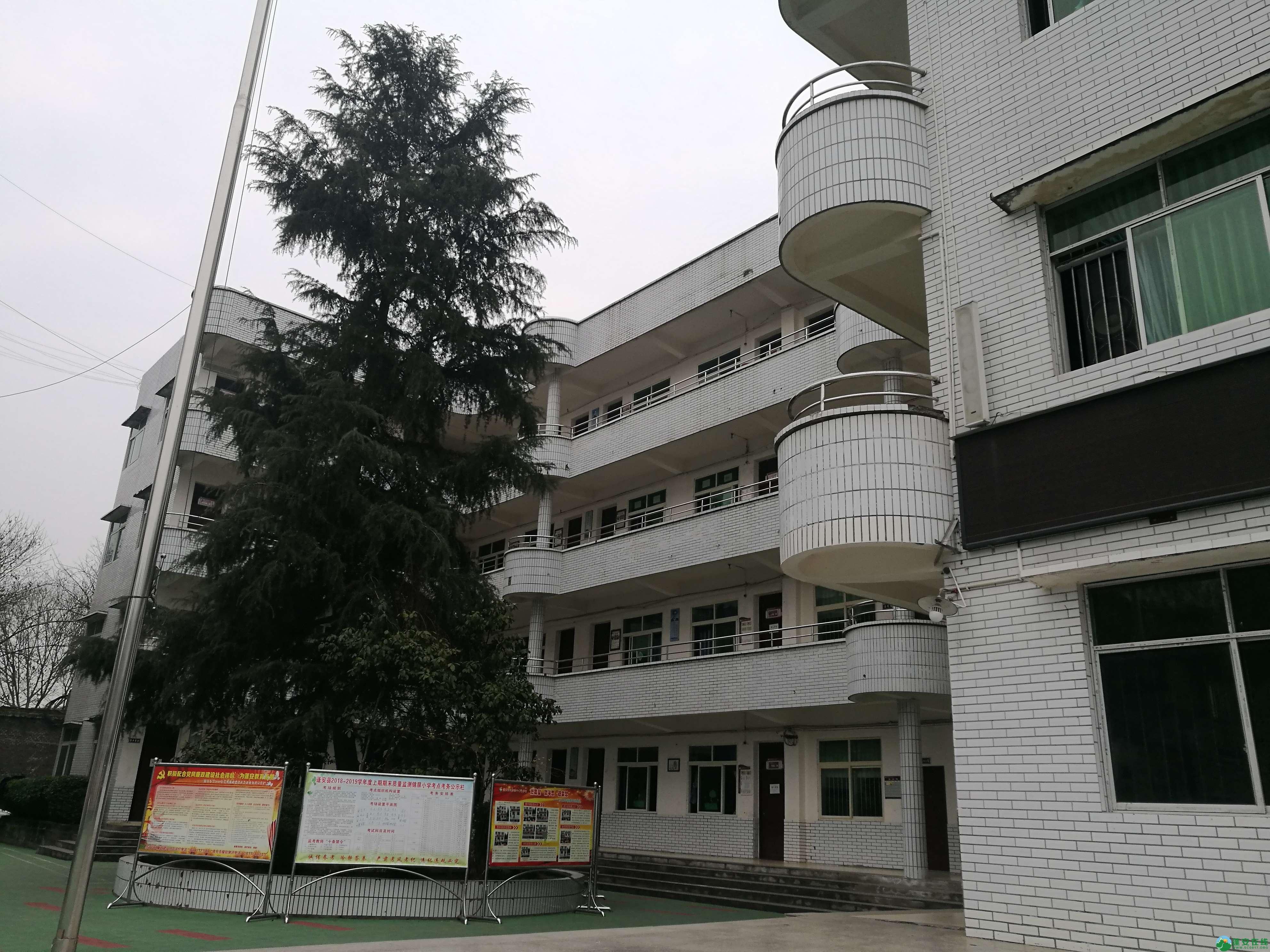 近二十年后再次走进锦屏小学 - 第12张  | 蓬安在线