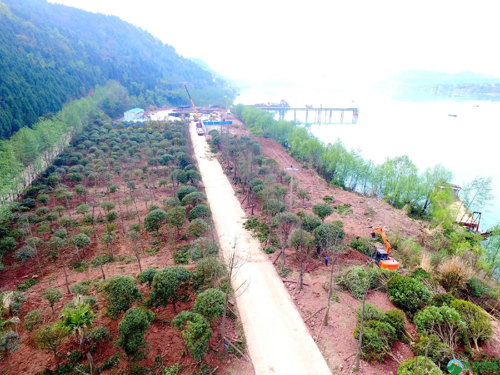 蓬安嘉陵江三桥新进展(2019.3.18) - 第10张  | 蓬安在线