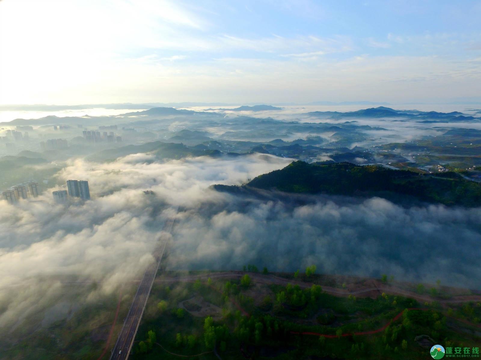 雾境蓬安 - 第2张  | 蓬安在线