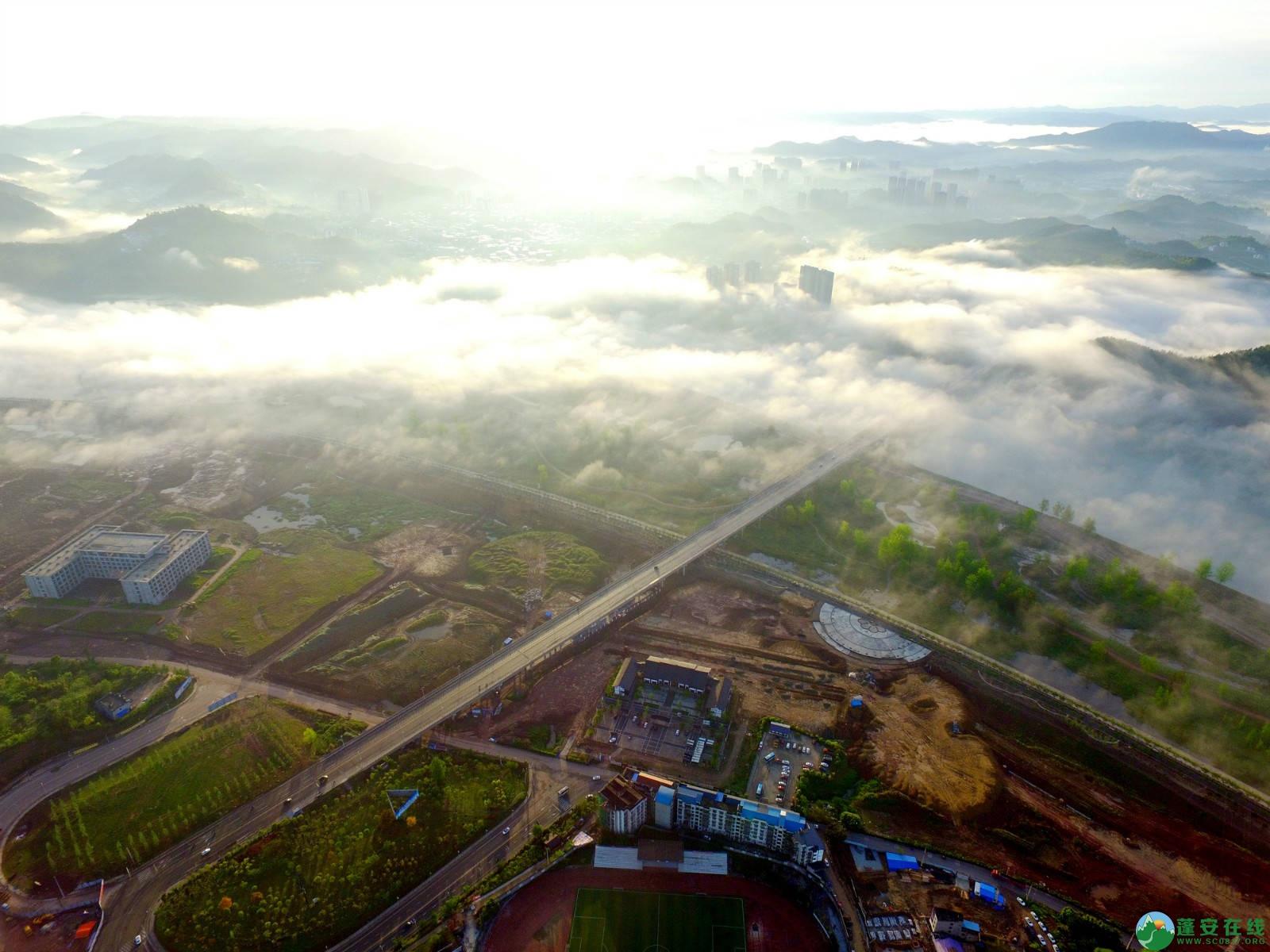 雾境蓬安 - 第6张  | 蓬安在线