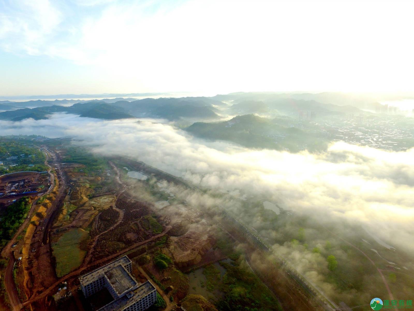 雾境蓬安 - 第18张  | 蓬安在线