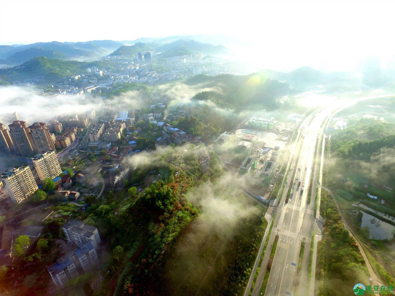 雾境蓬安 - 第24张  | 蓬安在线