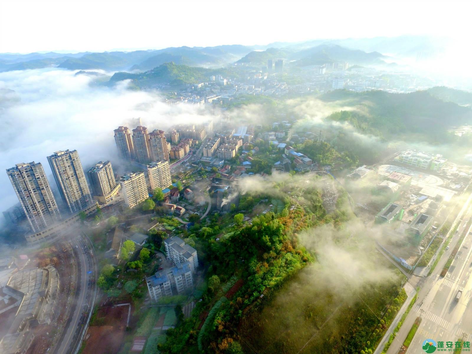 雾境蓬安 - 第25张  | 蓬安在线