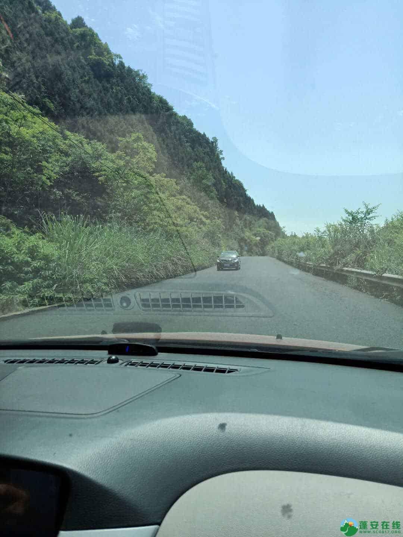 蓬安金周公路6月1日恢复通车 - 第6张  | 蓬安在线