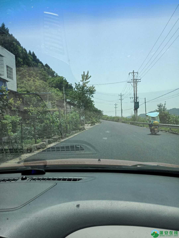 蓬安金周公路6月1日恢复通车 - 第12张  | 蓬安在线