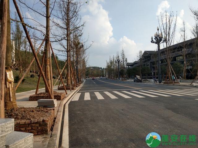 蓬安县嘉陵西路及棉麻路改扩接近尾声 - 第7张  | 蓬安在线