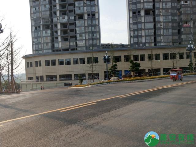 蓬安县嘉陵西路及棉麻路改扩接近尾声 - 第9张  | 蓬安在线