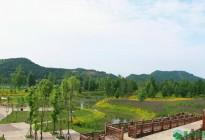 蓬安锦屏相如湖国家湿地公园夏景