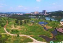 蓬安漫滩湿地