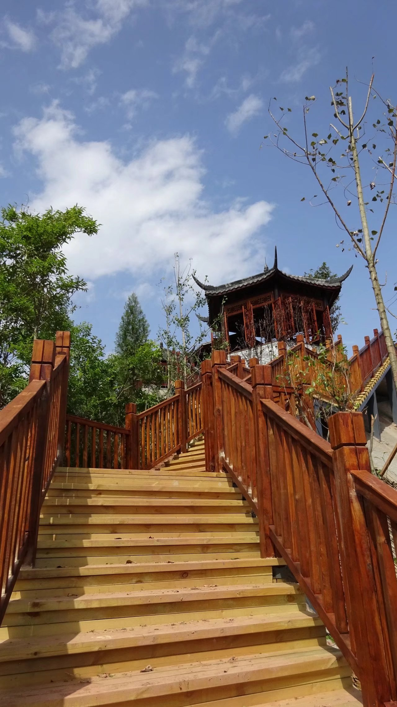 蓬安桑梓火锅公园施工进度(2018-05-10) - 第21张    蓬安在线