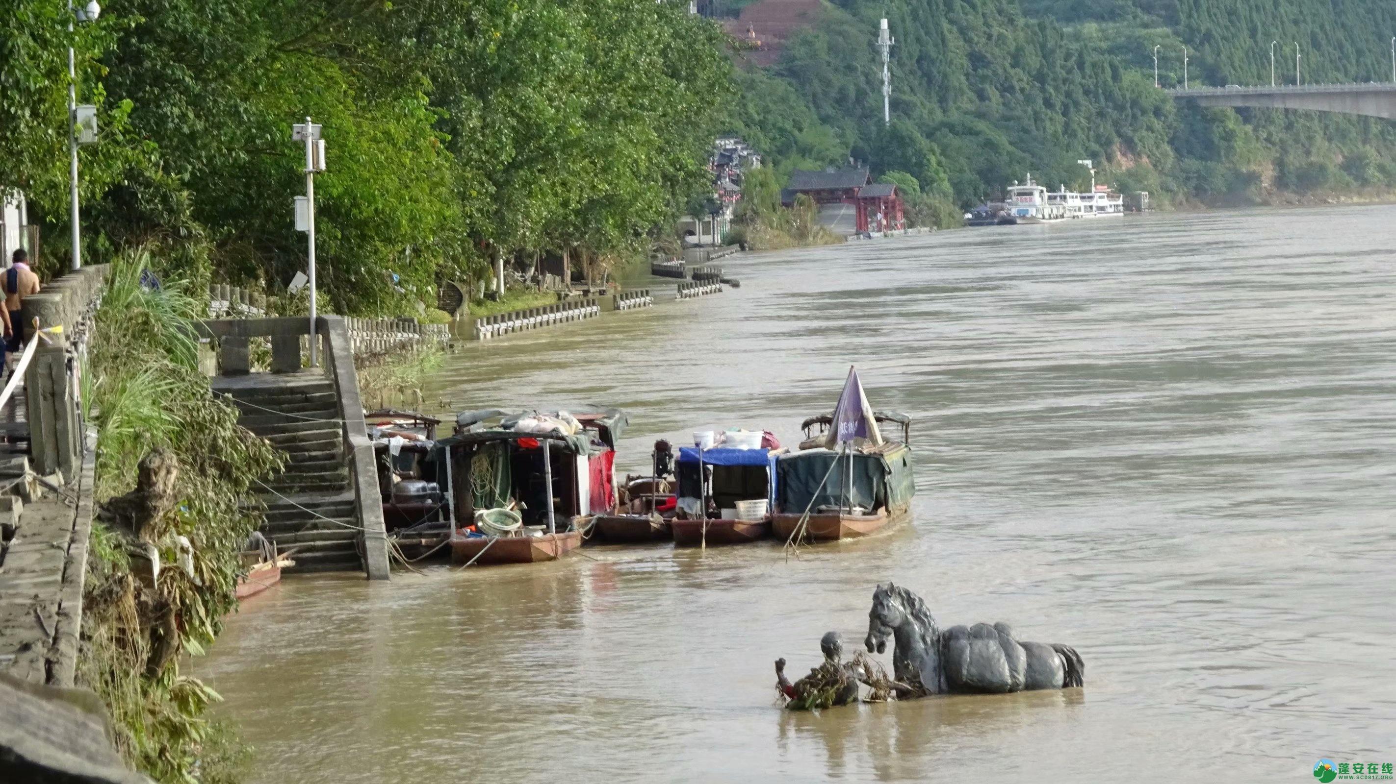 洪水退去后的蓬安县嘉陵江 - 第3张  | 蓬安在线