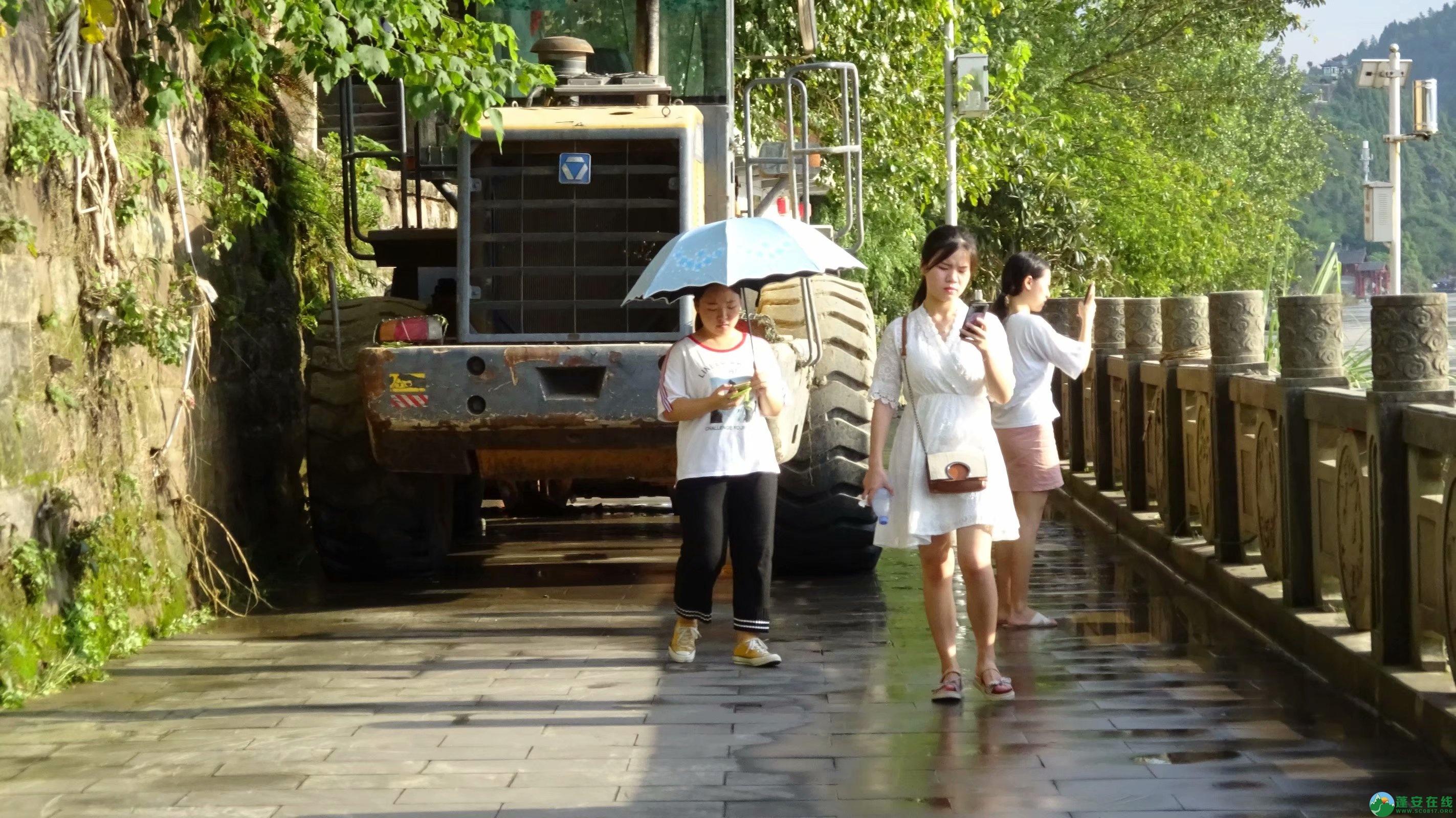 洪水退去后的蓬安县嘉陵江 - 第5张  | 蓬安在线