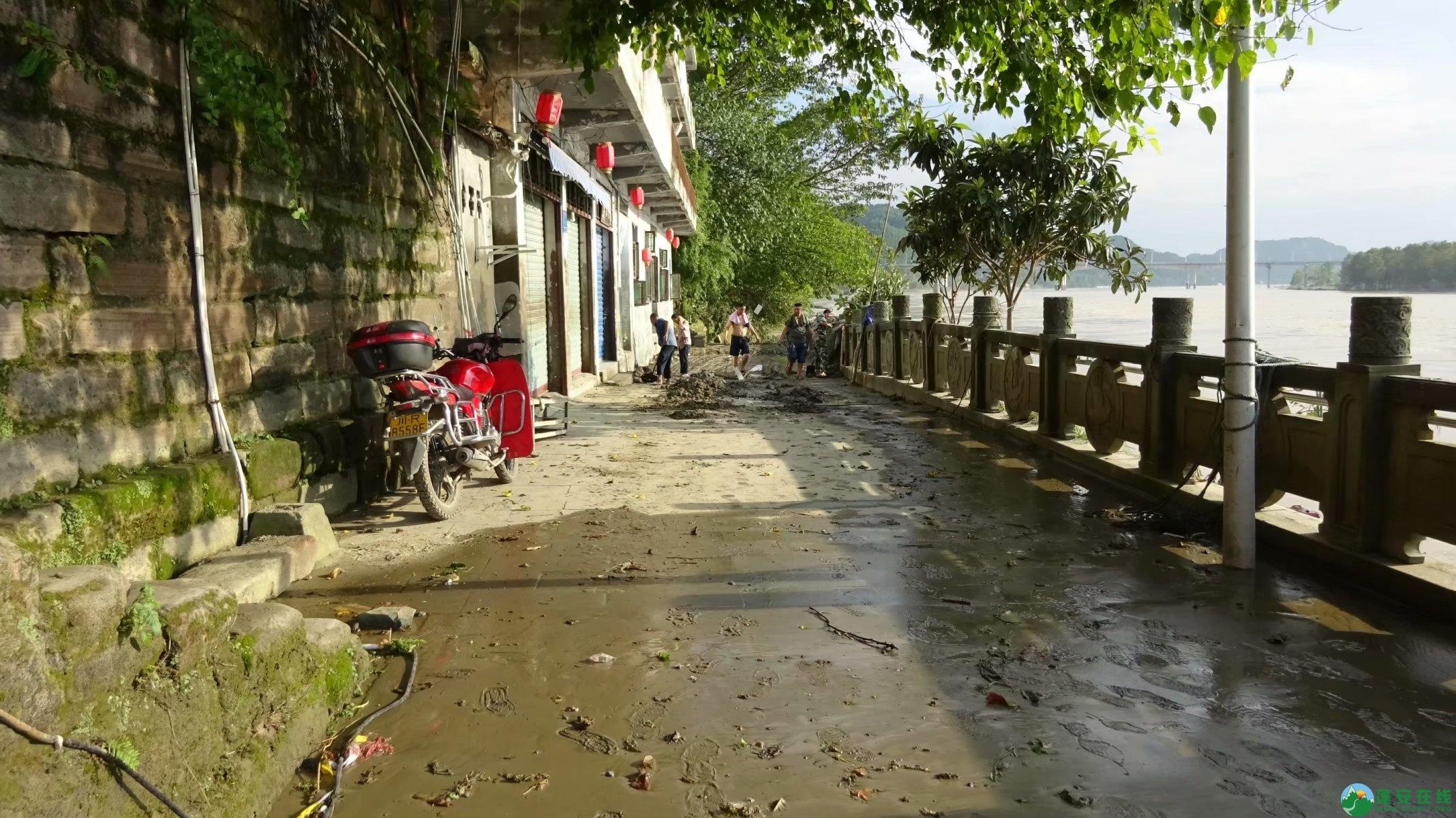 洪水退去后的蓬安县嘉陵江 - 第6张  | 蓬安在线