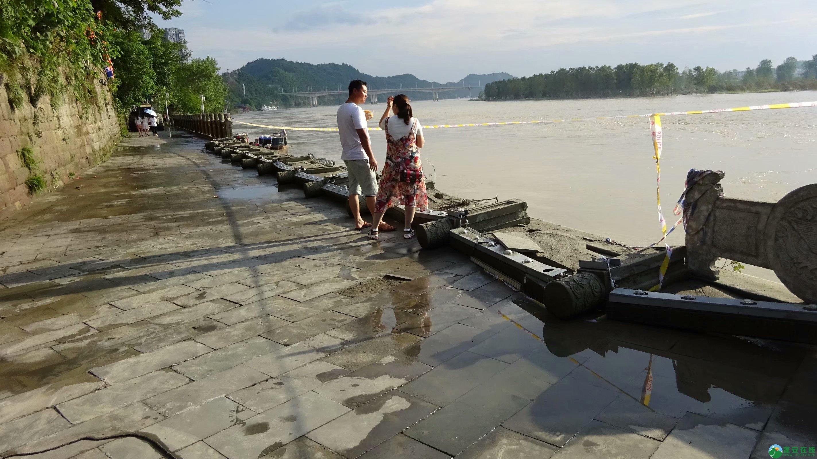 洪水退去后的蓬安县嘉陵江 - 第8张  | 蓬安在线