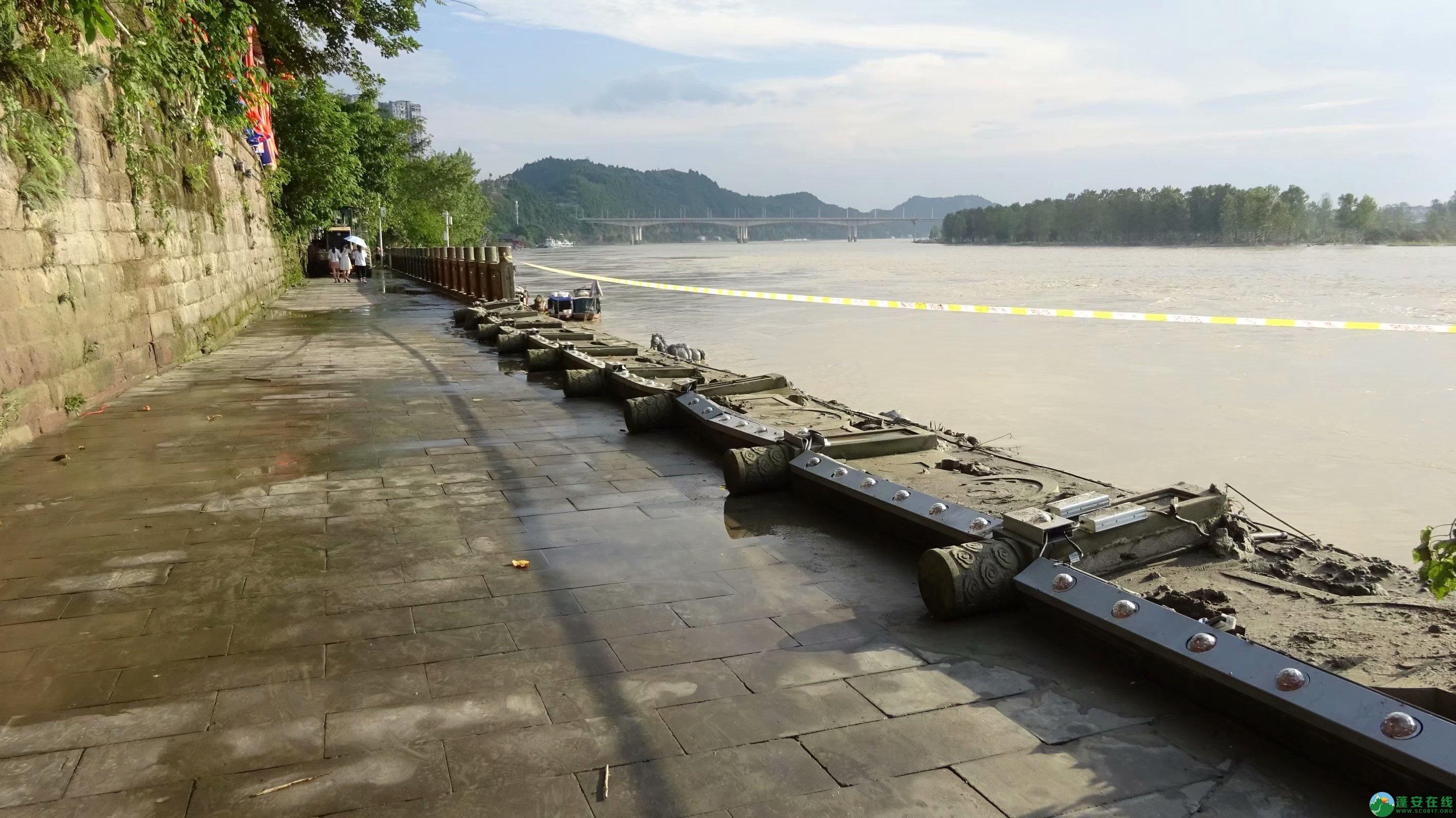 洪水退去后的蓬安县嘉陵江 - 第9张  | 蓬安在线