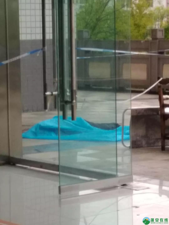 蓬安一空巢老人患病在县人民医院跳楼不幸身亡 - 第4张  | 蓬安在线