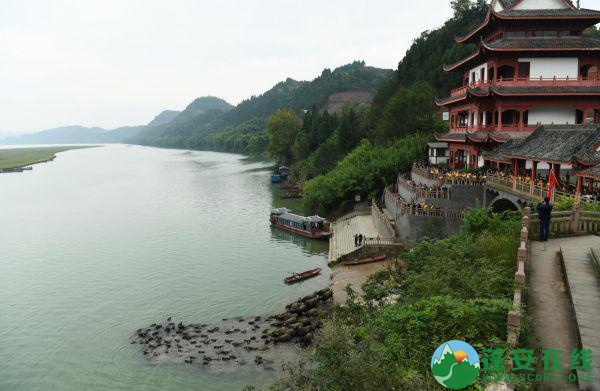 大型纪录片《嘉陵江》文化旅游考察团走进蓬安县 - 第1张  | 蓬安在线