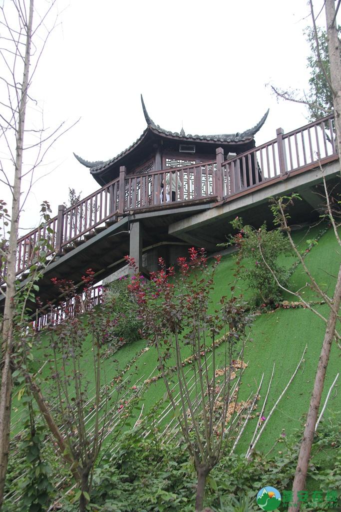 蓬安桑梓火锅公园山顶已对外开放 - 第30张  | 蓬安在线