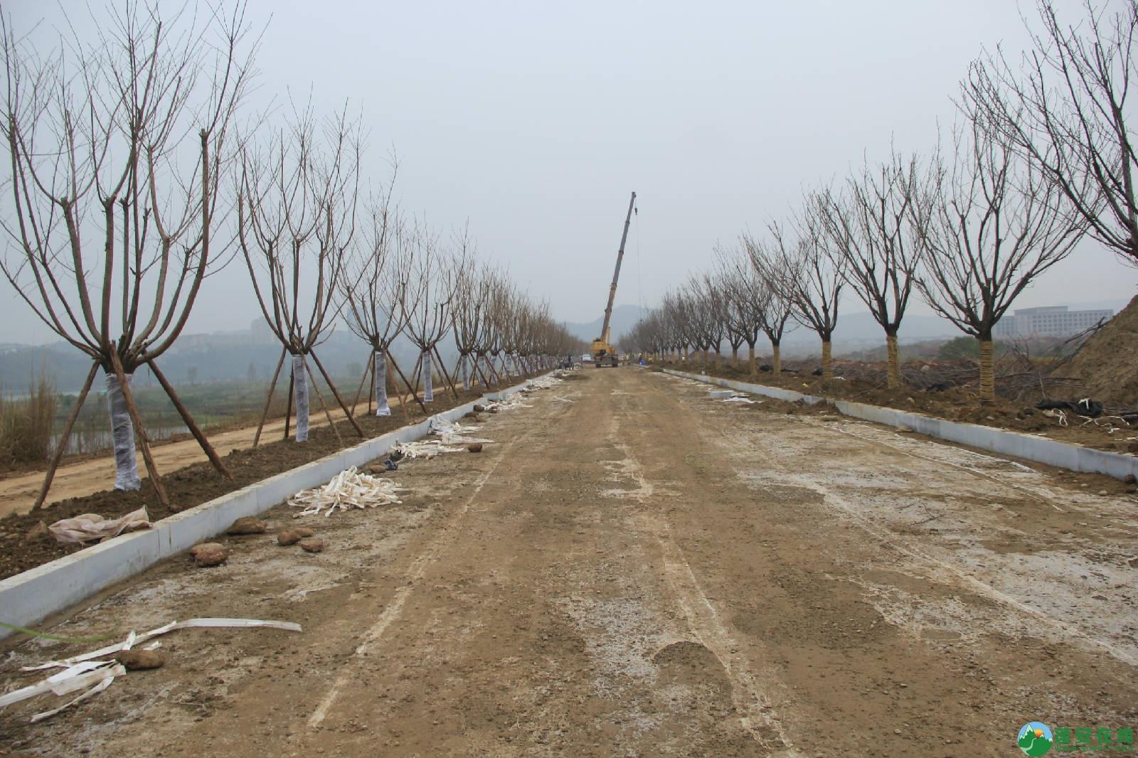 蓬安锦屏湿地公园嘉陵江跑道建设进度 - 第2张  | 蓬安在线
