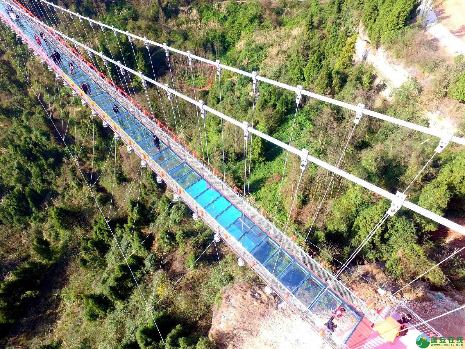 蓬安县正源镇红豆村首个悬空玻璃吊桥正式开放 - 第1张  | 蓬安在线