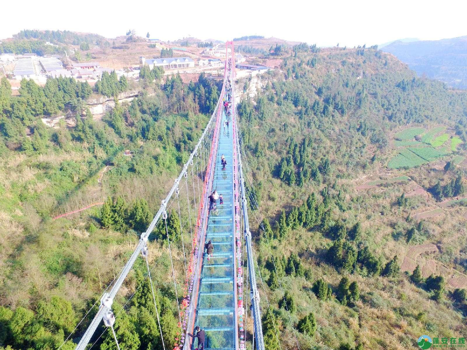 蓬安县正源镇红豆村首个悬空玻璃吊桥正式开放 - 第2张  | 蓬安在线