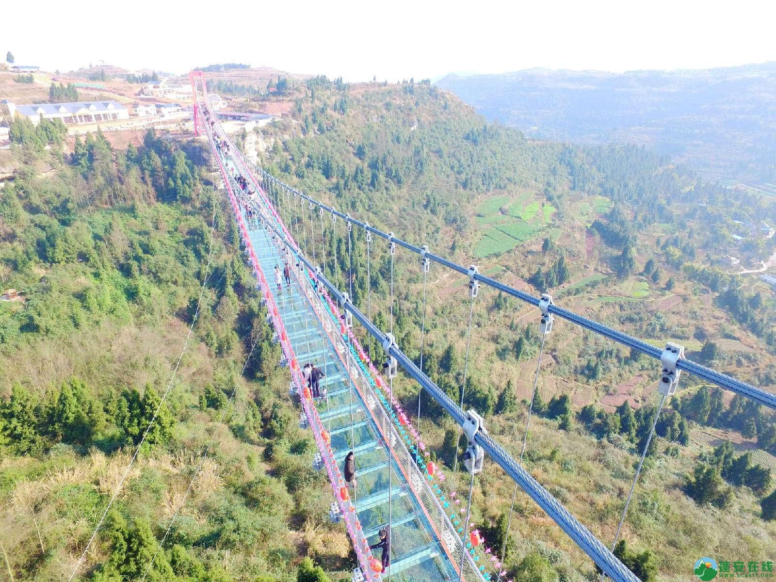 蓬安县正源镇红豆村首个悬空玻璃吊桥正式开放 - 第3张  | 蓬安在线