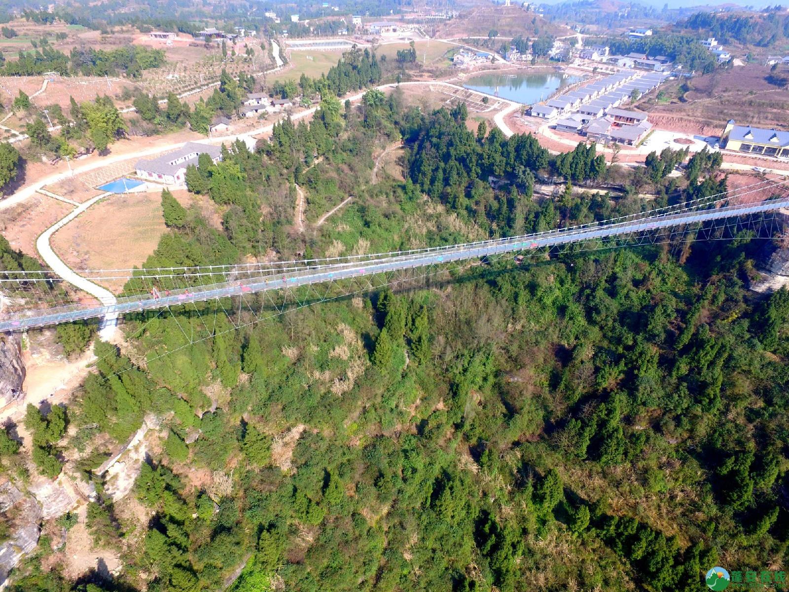 蓬安县正源镇红豆村首个悬空玻璃吊桥正式开放 - 第11张  | 蓬安在线