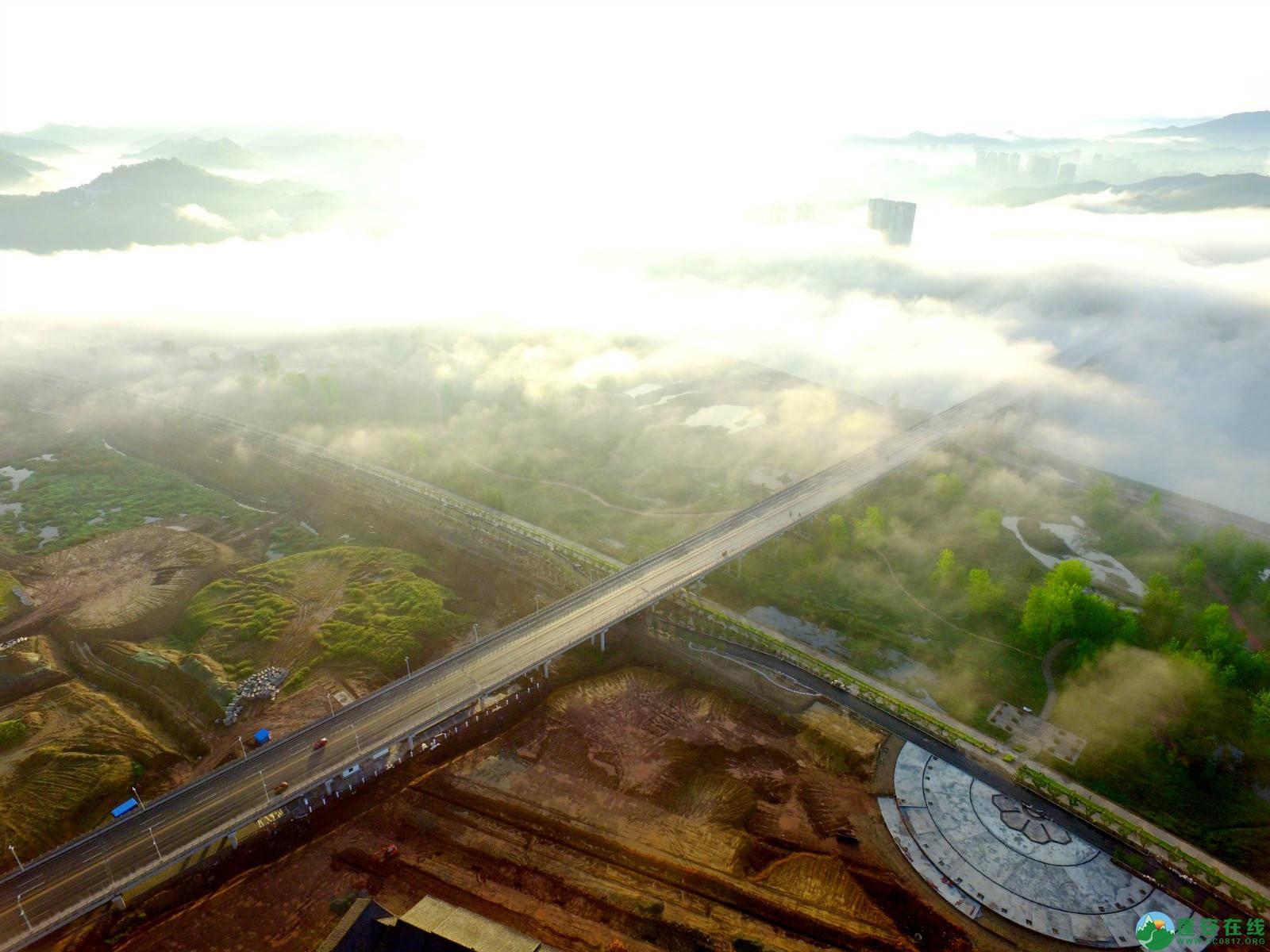 雾境蓬安 - 第3张  | 蓬安在线