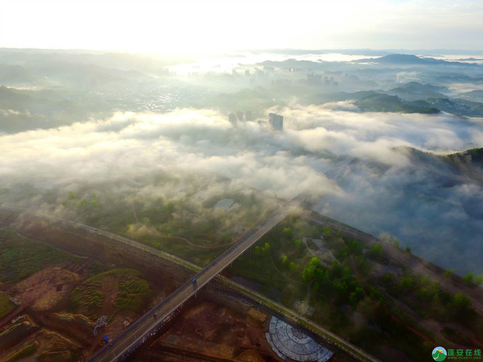 雾境蓬安 - 第4张  | 蓬安在线