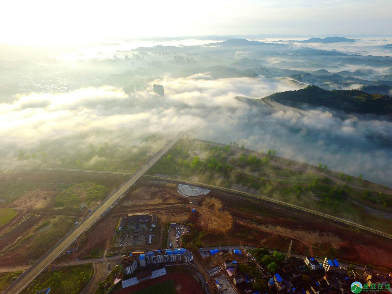 雾境蓬安 - 第5张  | 蓬安在线