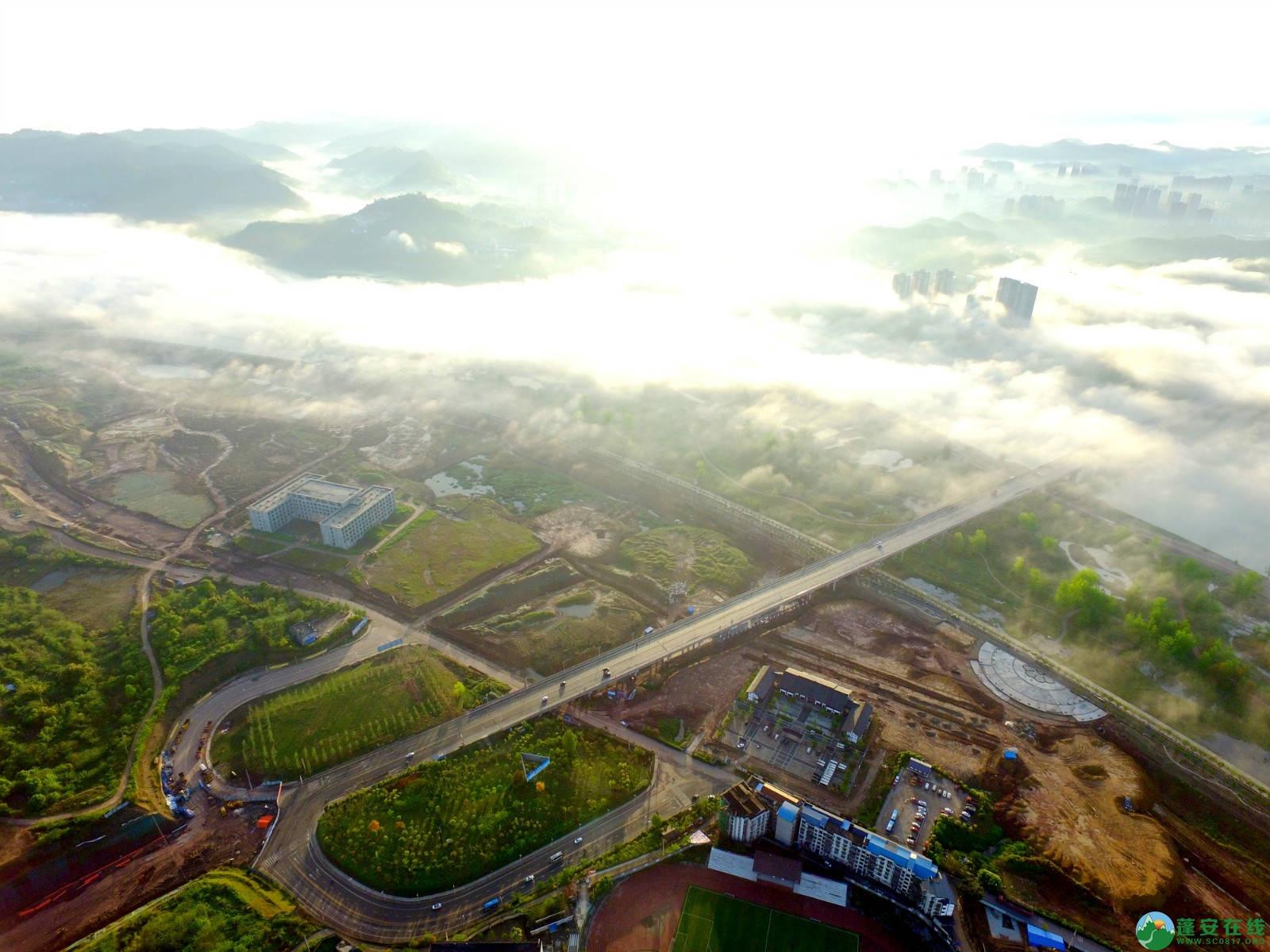 雾境蓬安 - 第7张  | 蓬安在线